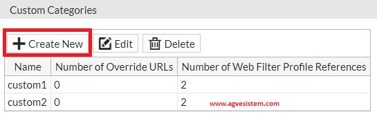 Yasaklı Olan Web Filtresi Kategorisinde Siteye İzin Verme