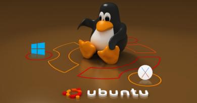 Hyper-V üzerine Ubuntu 16.04.4 Sunucu Kurulumu
